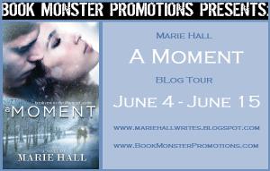 A Moment Tour banner